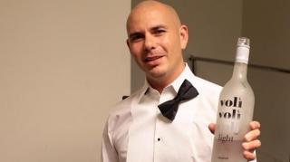 Pitbull Sued for $3 Million for Copyright Infringement